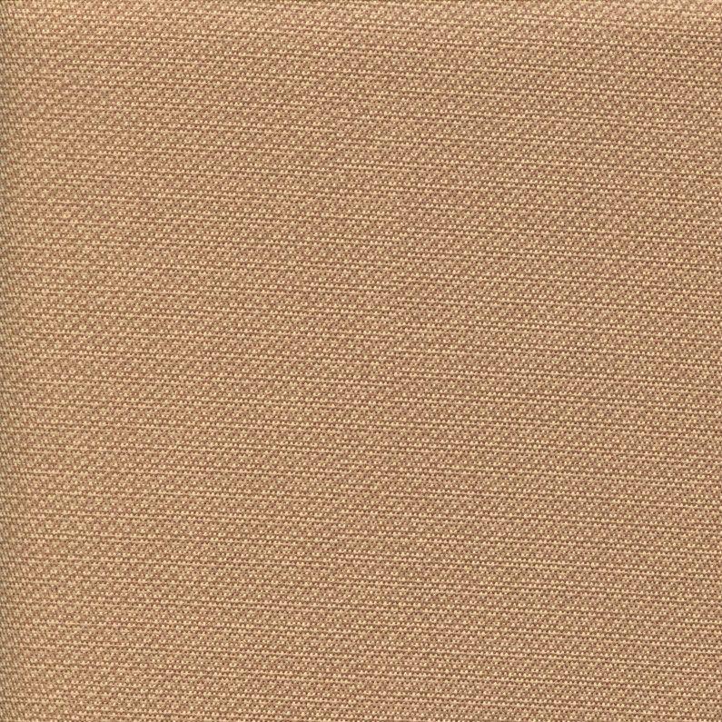 Berwick Tweed- Spiked Apricot