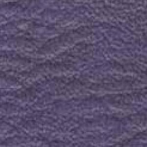 Burkshire- Wood Violet