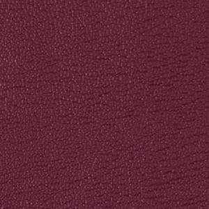 Colorguard- Grape