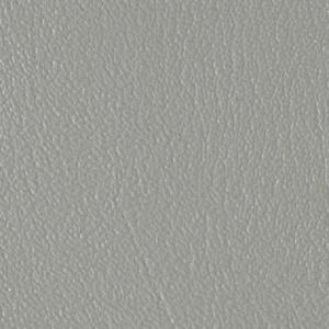 Colorguard- Gray