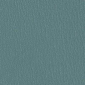 Colorguard- Jade