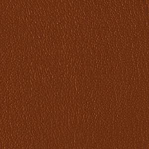 Colorguard- Manzanito