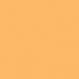 Colorguard- Marigold