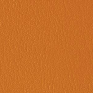 Colorguard- Nasturtium