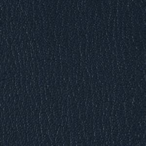 Colorguard- Navy
