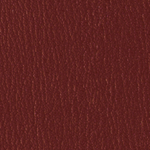 Colorguard- New Burgundy