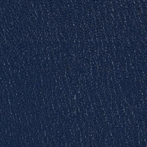 Colorguard- Royal Blue