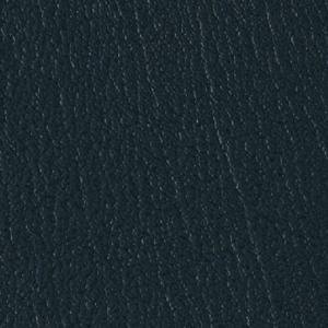 Colorguard- Spruce