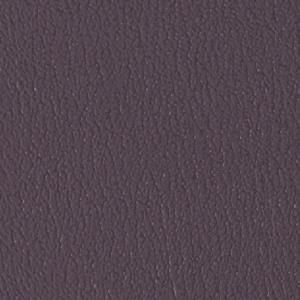 Colorguard- Wood Violet