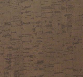 Cork - Fossil