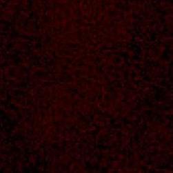 Expressions- Garnet