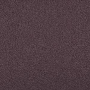 Jackson - Purple Heart