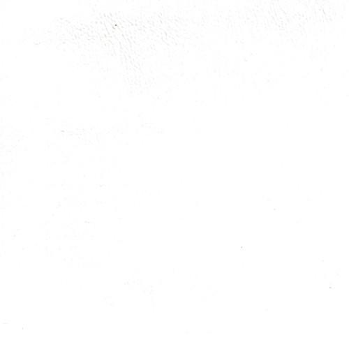 NaugaSoft- White