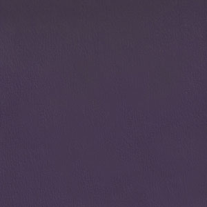Olympus- Purple Velvet