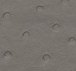 Ostrich - Grey
