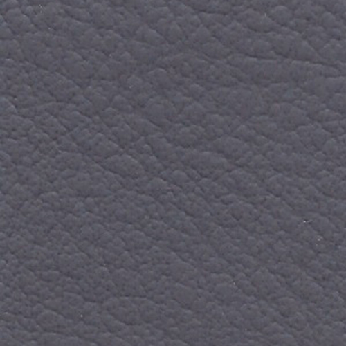 Revolution- Purple Haze