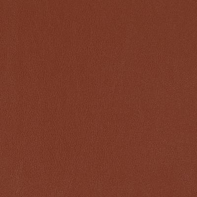Salinger - Henna