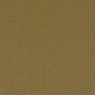 Salinger - Lotus Leaf