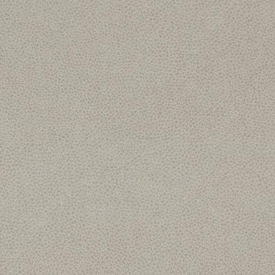 Tolstoy - Parchment