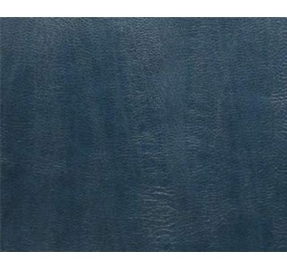 Unagi - Bluewater