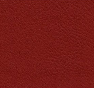 Verve - Cranberry