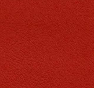 Verve - Hibiscus