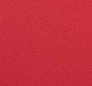 Vista - Cardinal