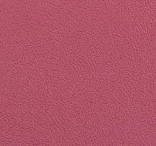 Vista - Hibiscus