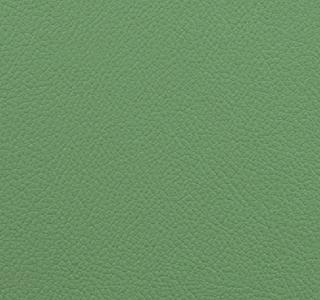 Vista - Key Lime