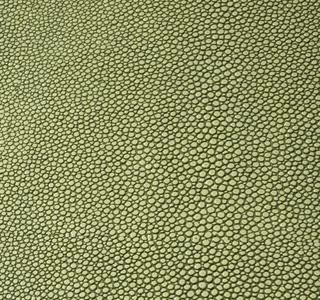 Zagrino - Green