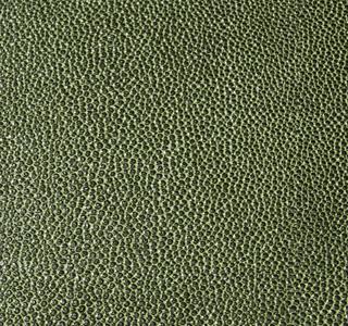 Zagrino - Green Black