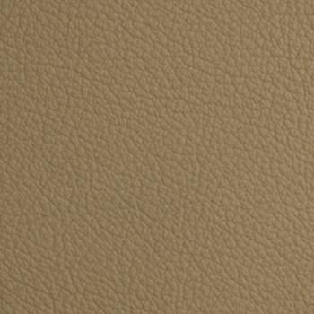 Mammut - Parchment