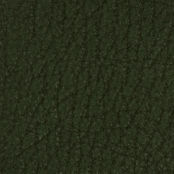 Sedona - Cactus
