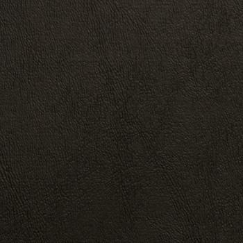 Chamea II - Black