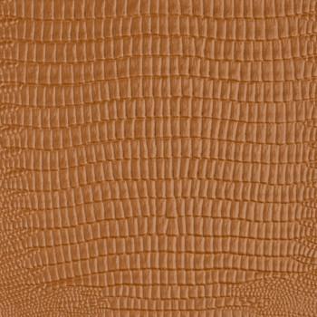 Reptile - Clay
