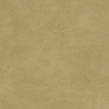 Carrara - Parchment