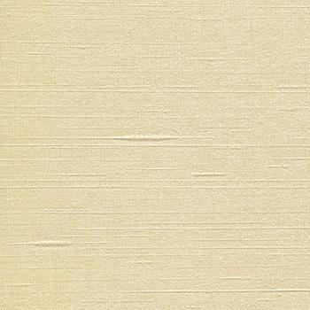 Vector - Parchment