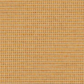 Draft - Mustard