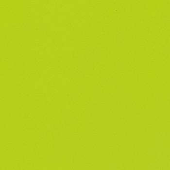 Endurance - Lime Zest