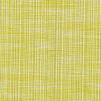 Guideline - Lemon Lime