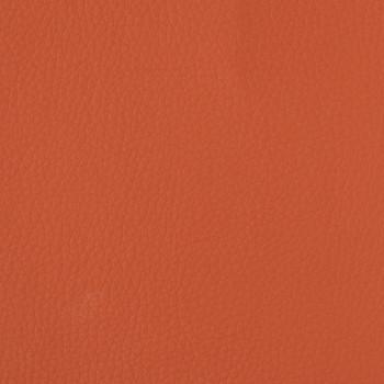 Indulge - Tangerine