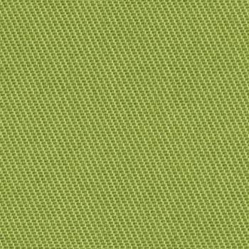 Chino - Lime