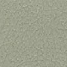 Spirit Millennium - Gray Moss
