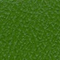 Spirit Millennium - Olive Green